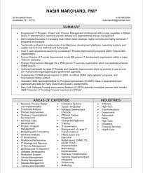 it project manager   free resume samples   blue sky resumesold version