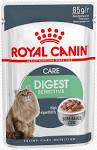 Cat Food <b>Sphynx</b> cat Dog <b>Kitten</b> Pet, Dog, animals, pet, dog Food ...