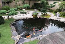 Small Picture small koi fish in garden for ponds design ideas YouTube