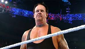 Image result for the undertaker 2015