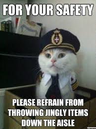Captain Kitteh Meme | WeKnowMemes via Relatably.com
