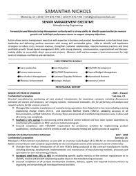 Resume Template Industrial Engineering Resume Objective Industrial Sales Resume Format Industrial Sales Engineer Resume Format Industrial Sales Rep Resume     Brefash