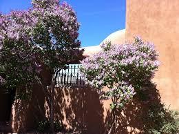 April in Santa Fe