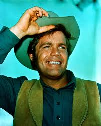 Image result for doug mcclure