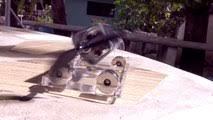 solar magnetic levitation