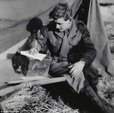 world war ii essay   academic essay world war i essay questions