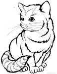 Раскраски животные котенок