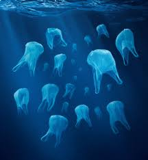 Image result for PLASTIC WASTE IN OCEANS