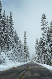Nature: лучшие изображения (15) | Природа, Путешествия и ...