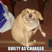 GUILTY AS CHARGED - Oh You Dog | Meme Generator via Relatably.com