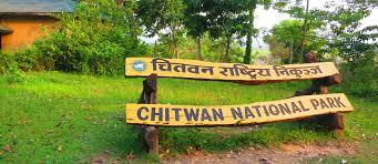 Image result for chitwan