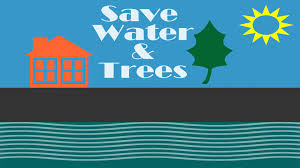 save water trees animation save water trees animation