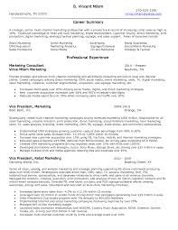vice president of operations resume examples vice president of vice president of operations resume examples