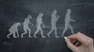 how does natural selection lead to evolution com