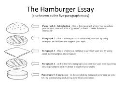how to write a good opening paragraph for a persuasive essay   how    math worksheet   opening paragraph essay estoes co how to write a good opening paragraph for