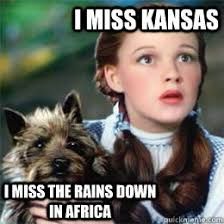 I miss Kansas I miss the rains down in Africa - Toto song dog ... via Relatably.com