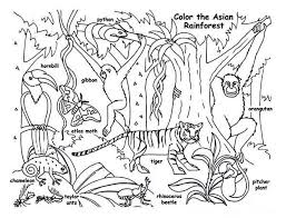 Small Picture Cartoon Jungle Animals Coloring Pages Coloring Coloring Pages