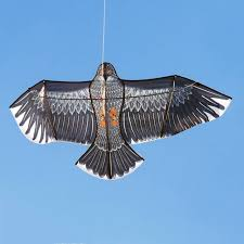 Online Shop <b>Free shipping high quality</b> 2m large eagle kite flying ...