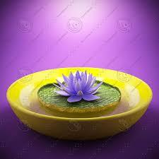 <b>Lotus flower 3D</b> Model $10 - .unknown .obj .max - Free3D