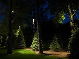 down lighting the light source is mounted above an object or area and the beam is area lighting flower bed