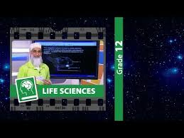 life science essays for grade life science assignment grade  life science essay questions gradelife sciences grexam