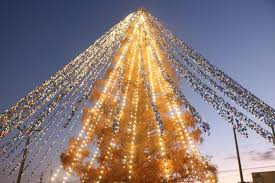 Look: <b>Christmas tree</b> with 51,626 notes attached <b>sets</b> Guinness ...