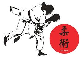 Image result for jiu jitsu