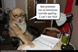 I don     t want to do my homework poem   Professional Writing  palmett ee