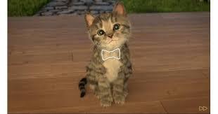 Little Kitten - <b>My Favorite Cat</b> App Review