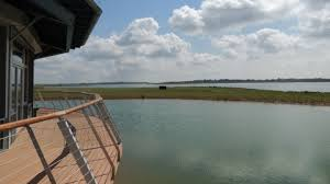 Abberton <b>Reservoir</b> Nature Discovery Park   Essex Wildlife Trust