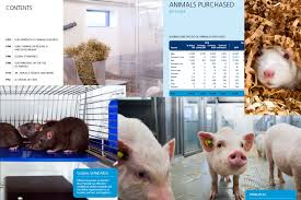 animal testing speaking of research montage of images from the novo nordisk brochure on its animal research click to enlarge