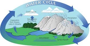 the water cycle   precipitation educationdiagram of the water cycle showing evaporation  condensation  and precipitation