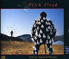 Pink Floyd - <b>Delicate Sound of Thunder</b>: Live - Amazon.com Music