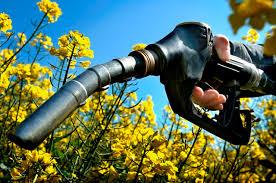 Αποτέλεσμα εικόνας για βιοκαυσίμων