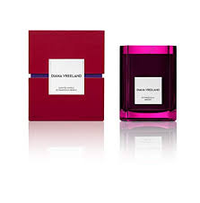 <b>DIANA VREELAND OUTRAGEOUSLY</b> Vibrant Candle: Amazon.in ...