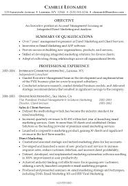 professional summary on resume sample professional summary resume