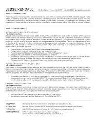 resume auto  s consultant college essay edit service  sales consultants