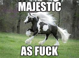 Image - 546105] | Majestic as Fuck | Know Your Meme via Relatably.com