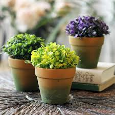 low light plants for office desk attractive office plant light 4 charming office plants
