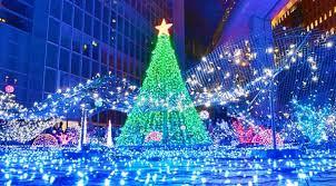 Resultado de imagen para la navidad