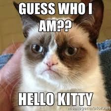guess who I am?? Hello Kitty - Grumpy Cat | Meme Generator via Relatably.com