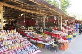 Image result for หมู่บ้านชาวเขาตลาดชาวเขาดอยอินทนนท์