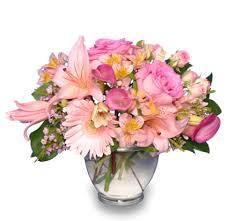 <b>DELICATE</b> AFFECTION Pink <b>Floral</b> Vase in Charlotte, NC ...