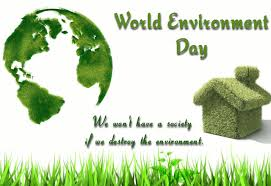 funallru   essay for you   page  simple essay on world environment day