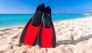 10 Best <b>Snorkeling</b> Fins Reviewed & Compared in 2019 | Reviews ...