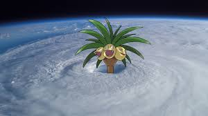 Image result for alola exeggutor meme