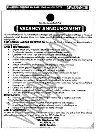 apply for this job internal auditors job description