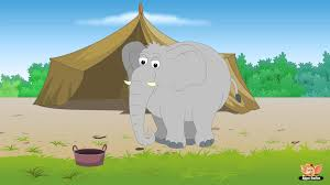 animal facts in hindi elephant animal facts in hindi elephant