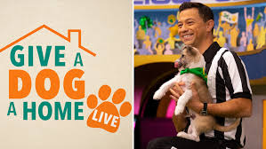 'Give A <b>Dog</b> A Home Live!' Animal <b>Planet</b> Unleashes Twice-Weekly ...