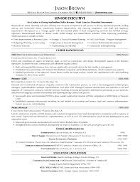 doc 547713 s executive resume example cover letter sample resume sample template qhtypm career bakground on executive resume